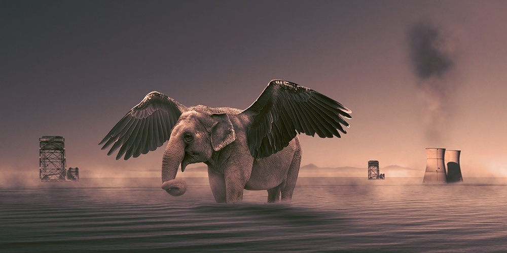 create an elephant with wings