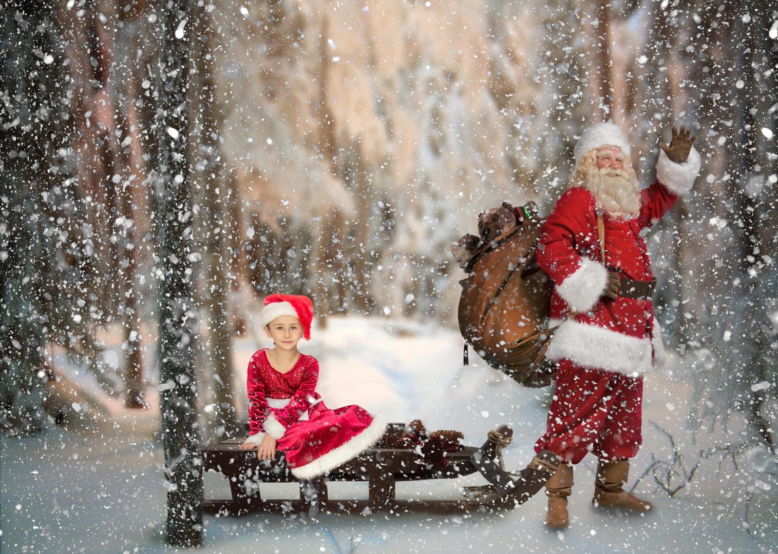 Anna Chmura-Jenkins Santa's sleigh