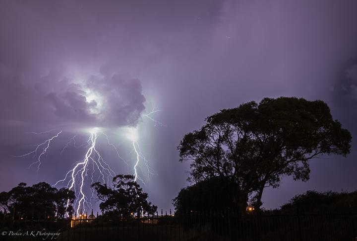 lightning night sky tree blue purple