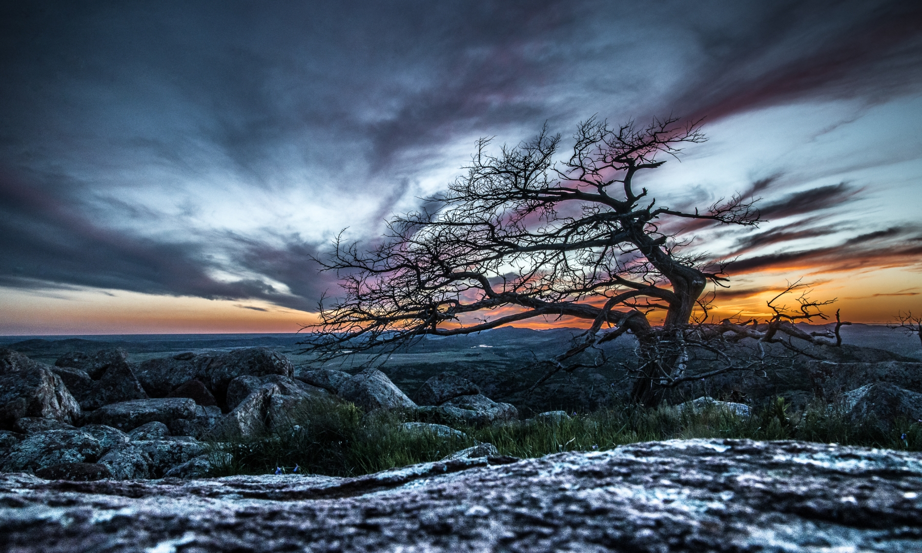 landscape tree cold winter sunset rocks texture