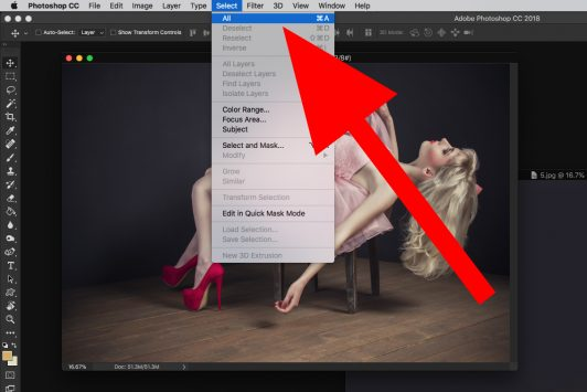 photoshop select all screen capture model pink dress