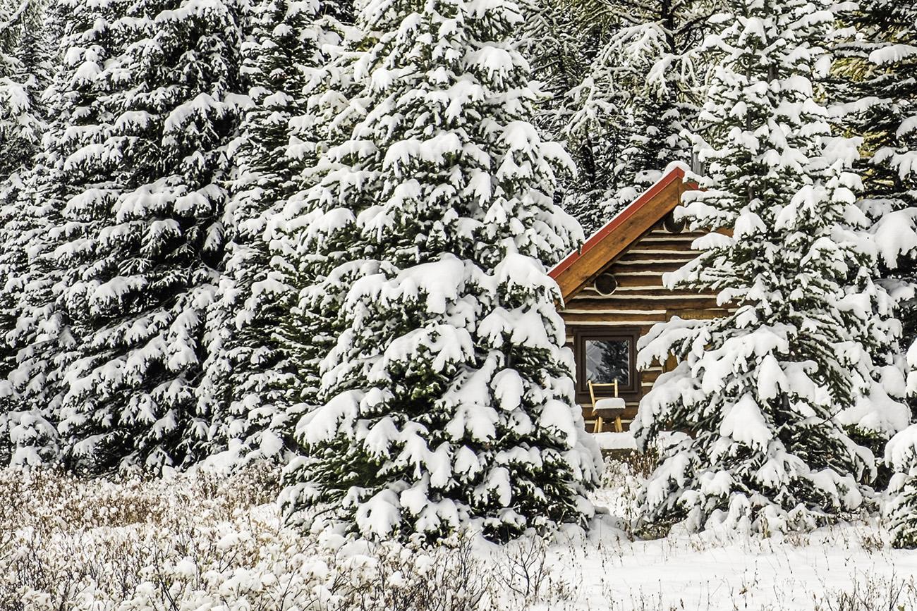 12 Days of Christmas Winterscapes Karen Vynckier-Walker